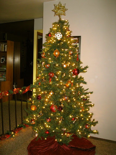 Tree number 1 is up!