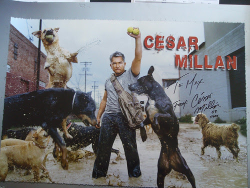 Cesar_Millan
