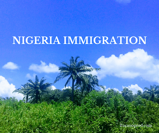 Nigeria immigration: visa, work permit, residency and citizenship