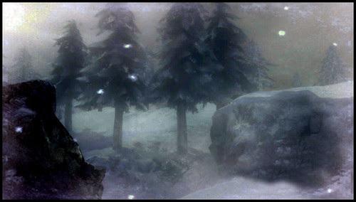 SHADOW MOSES SNOWFIELD