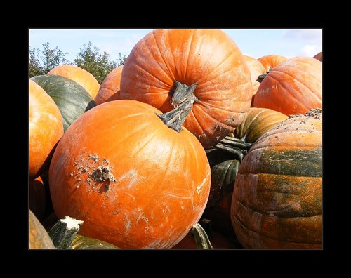 Pumpkins on a Wagon