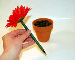 http://www.crafts-for-all-seasons.com/flower-pot-pen.html