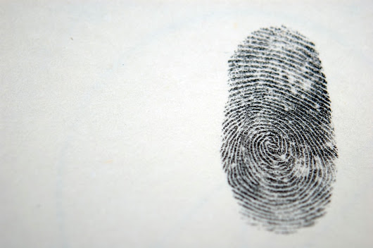 Fingerprints: From the Trees to a Life of Crime - ANSI Blog