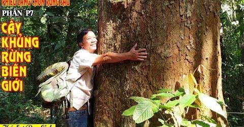 Ký Sự Phiêu Lãng Chốn Rừng Sâu - Tập 8 - Xâm Nhập Rừng Biên giới