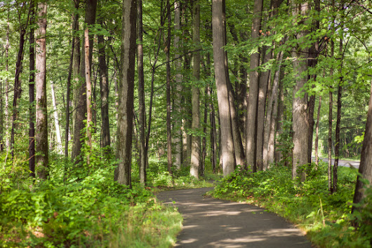 Bike on, Holland: Lakeshore trail network provides a safe & scenic haven for cyclists