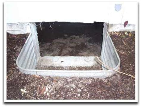 Rodent Exclusion   Classic Insulation Pest Control