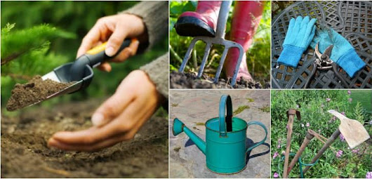 9 Essential Garden Tools for Your Shed • 1001 Gardens