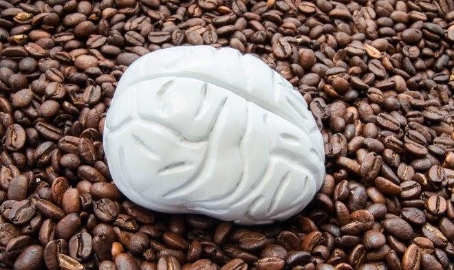 Швейцарские ученые: потребление кофеина снижает объем серого вещества в мозге