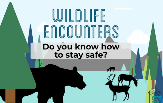 InfoGraphic: Wildlife Encounters | SafetyVantage