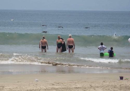 Intrepid surfers