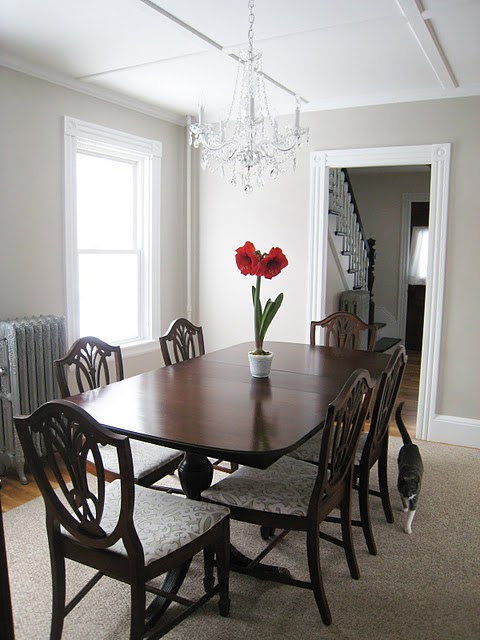Shield Back Dining Chairs - Traditional - dining room - Martha ...