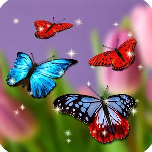 Butterfly Wallpaper   Android Apps on Google Play