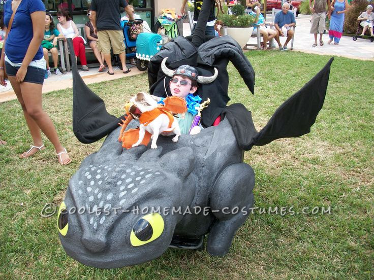 Awesome Toothless And Hiccup Wheelchair Costume Hiccup