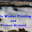 Late Winter Planting and Frozen Ground