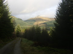 View from Glen Branter Forestry Path