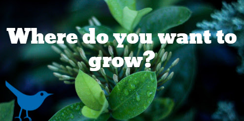 Where do you want to grow?