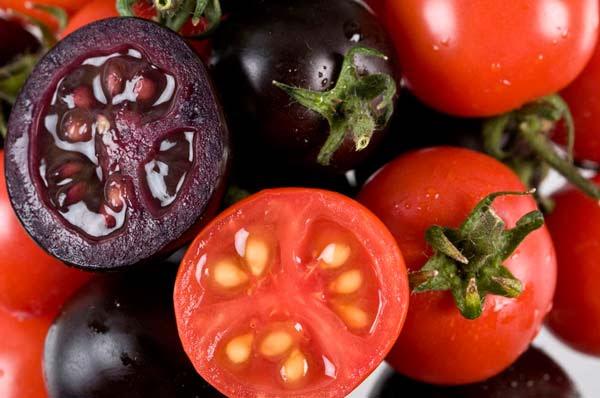 Perierga.gr - Γνωστά λαχανικά στη... μοβ έκδοσή τους!