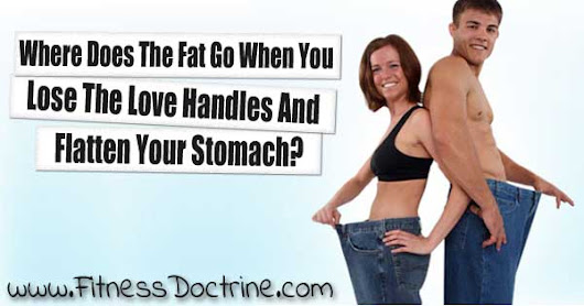 What Happens To Fat When You Lose Weight? ~ Fitness Doctrine