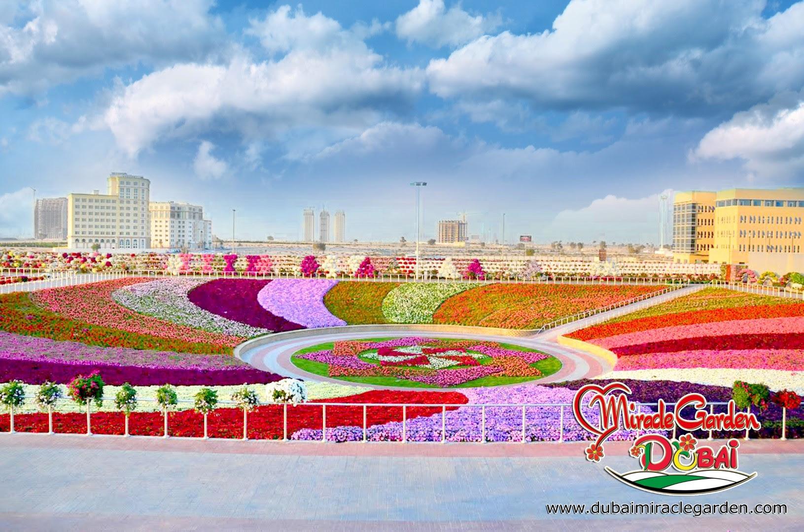 Dubai Miracle Garden 03
