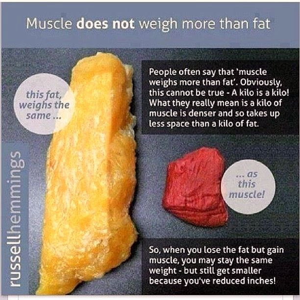 weight loss based on body fat percentage
