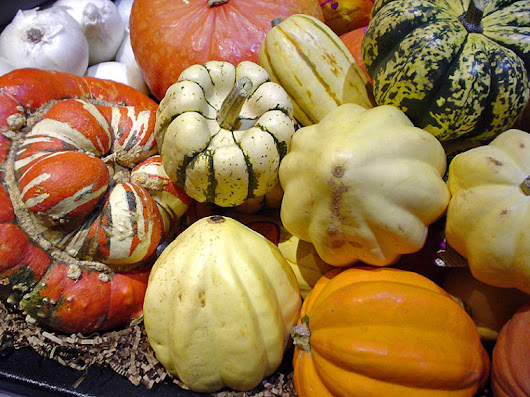 Don't Waste Your Pumpkin! What to do With Scraps – NaturePonics, LLC.
