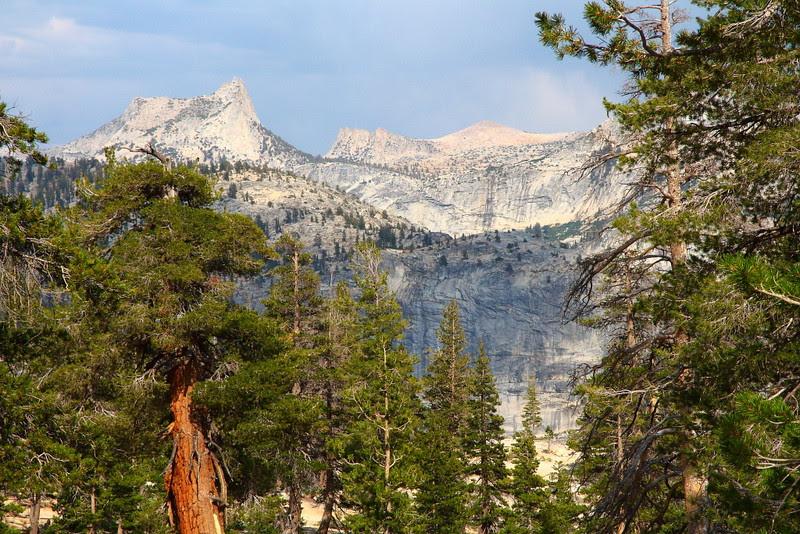 IMG_8640 May Lake Trail