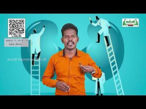 11th  Zoology கழிவுநீக்கம்  பாடம்  8  அலகு  7  பகுதி 1  Kalvi TV