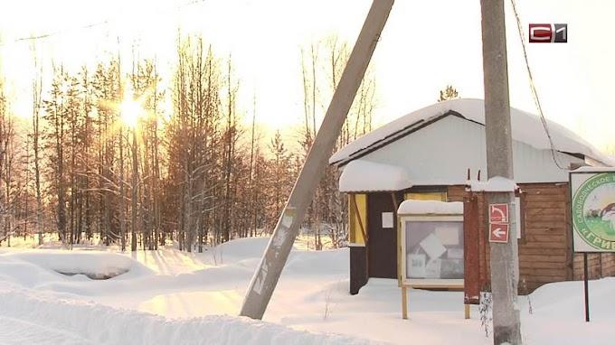 Зима без перебоев: как дачные кооперативы Сургута решают проблему со светом