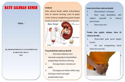 leaflet batu saluran kemih