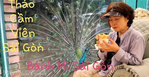 Một ngày thư giản của cả nhà. Dì và mẹ chồng Hàn Quốc cực thích bánh mì Việt Nam