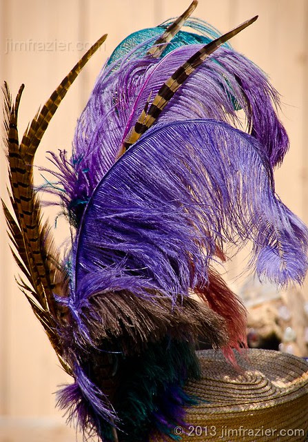 Tall Feather