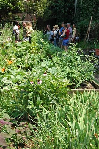 Clifton Place Garden