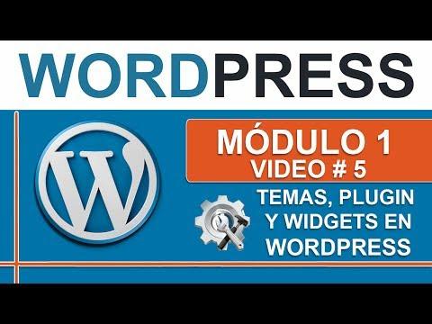 Que son los Temas, Plugins y Widgets en Wordpress