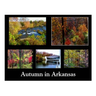 Autumn in Arkansas Photograph Postcard