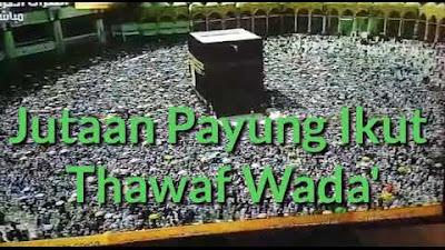 Jutaan Payung Berputar Ikut  Thawaf Wada'