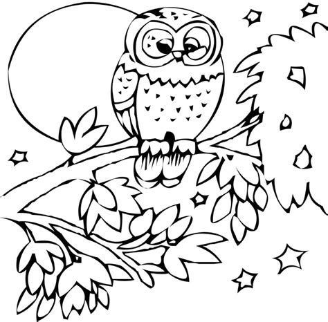coloring pages printable animal pictures  coloring