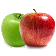 How to Compare Insurance Apples to Apples