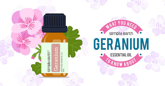 What You Need To Know About Geranium Essential Oil