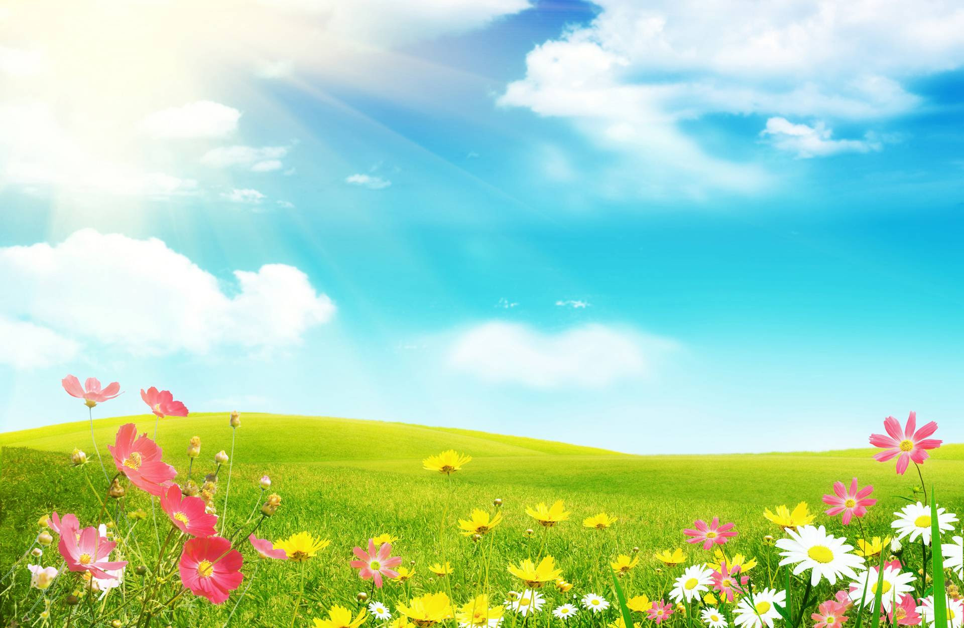 Free Spring Backgrounds Desktop  Wallpaper Cave