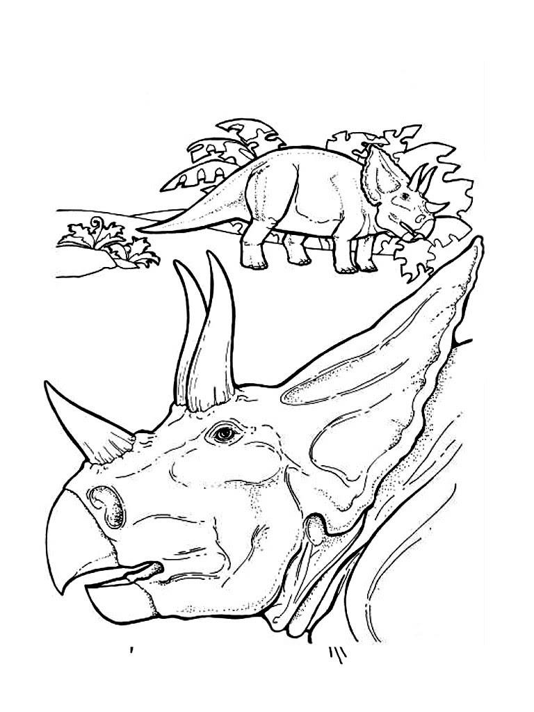 Triceratops Gesicht zum Ausmalen Triceratops Kopf zum Ausmalen