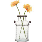 Glass Vase with Metal Frog Lid - De3875