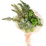"""21"""" Green Succulent Bouquet"""