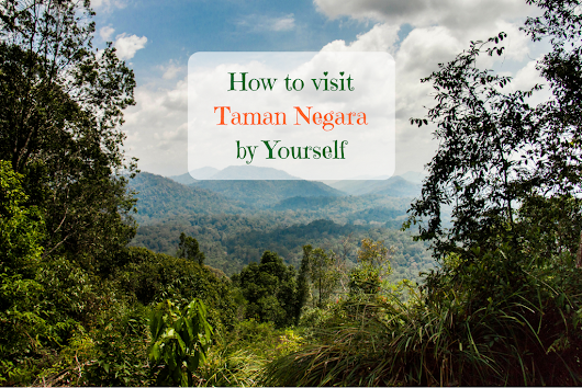 How to Visit Taman Negara by Yourself