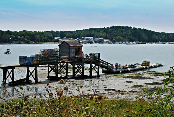 The shack behind Newick's on the Great Bay.