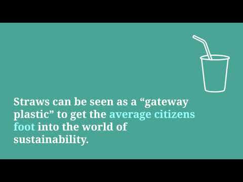 Working to be Plastic Free: My Interview with Straw Free Tally