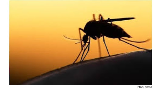 Study Sheds New Light on Climate Change and Mosquito and Tick-Borne Viruses - PCT - Pest Control Technology