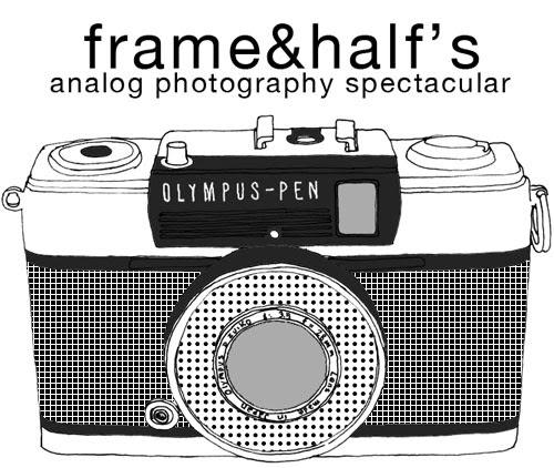 frame&half's