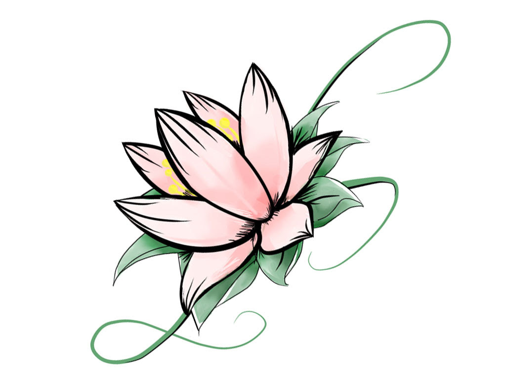 Drawing Skill Lotus Flower Drawing Easy Step By Step