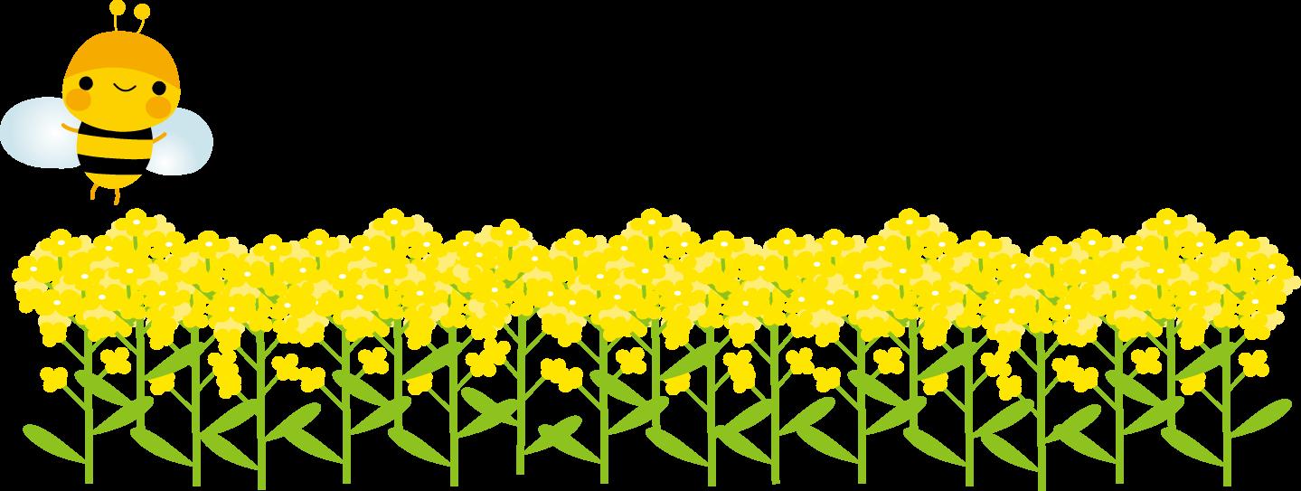 菜の花とみつばちのイラスト 無料イラストフリー素材