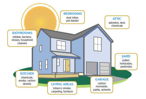 Types of Air Pollution & How to Improve Indoor Air Quality